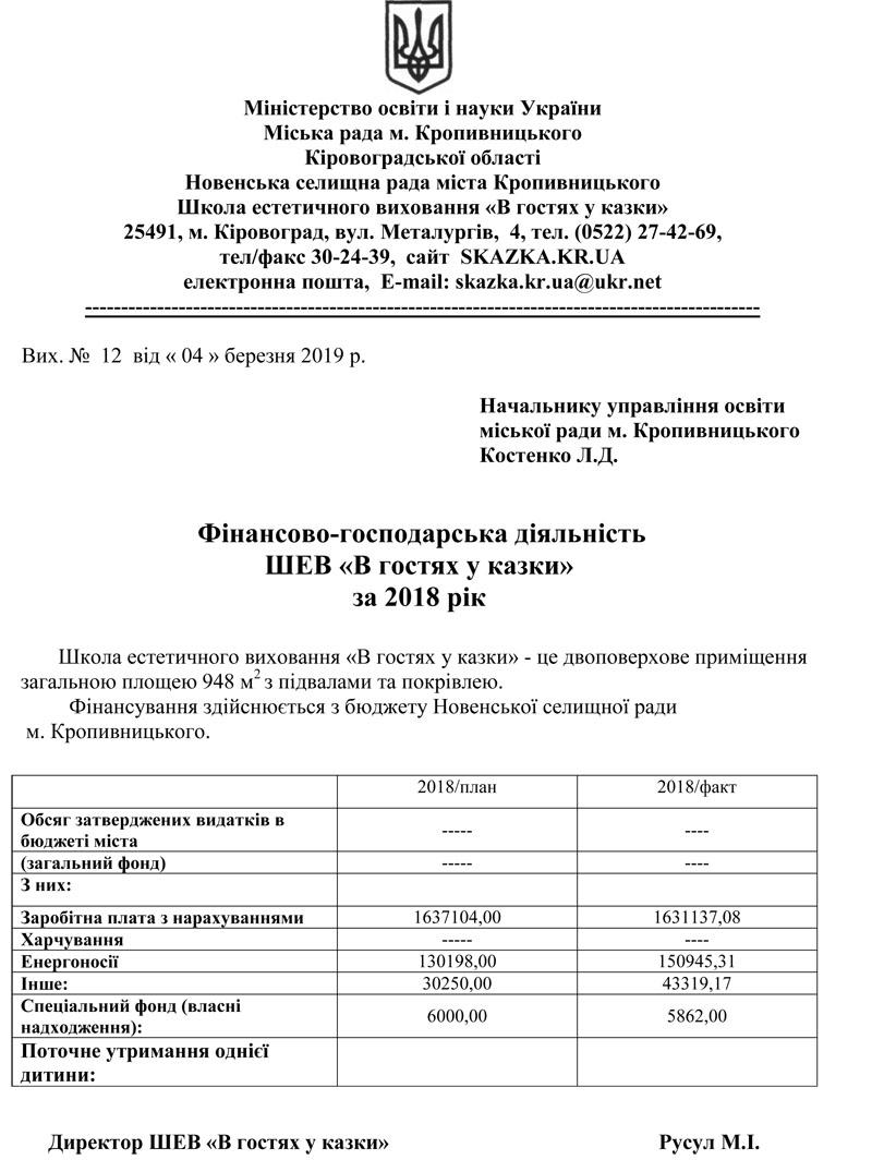 фінансово-господарська звітність за 2018 р
